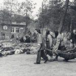 Alemania sube a la red 30 millones de documentos sobre víctimas del Holocausto