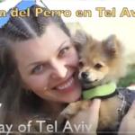 Día del perro en Israel