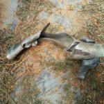 Horas antes de la Pascua judía: un cohete explota en un invernadero del sur de Israel