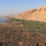 El Desierto de Judea se torna verde