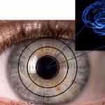 Investigadores israelíes miran a los ojos para detectar signos tempranos de Alzheimer