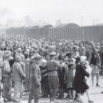Carta descubierta en Auschwitz describe el horror de los crematorios