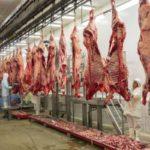Israel es el nuevo mercado para la carne bovina colombiana