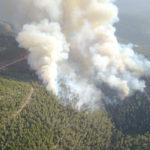 Crean sistema para detección temprana de incendios forestales en Israel