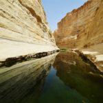Néguev, el desierto desconocido de Israel