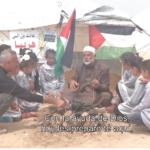 El verdadero problema de Gaza