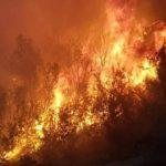Desastre ecológico en Israel por el terror palestino: 1.200 hectáreas arrasadas por las llamas