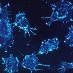 La ciencia israelí y la italiana se unen en un novedoso esfuerzo contra el cáncer