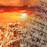 Shavuot: este sábado por la noche Israel y el mundo judío celebran la fiesta de la entrega de la Torá