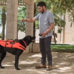 Innovación de Israel permite a los dueños comunicarse con sus perros
