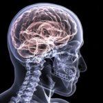 Descubren en Israel nueva tecnología que puede contener avance del Alzheimer