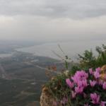 Los israelíes se preparan para un fin de semana ventoso y lluvioso después de una ola de calor inusual