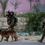 FDI: Ataque terrorista frustrado en Cisjordania, sospechoso muere a causa de las heridas