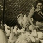 Una heroína judía de la Segunda Guerra vive en un museo de Israel