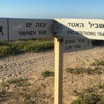 Los 10 mejores paseos marítimos de Israel