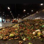 Israel impulsará el reciclaje de residuos orgánicos